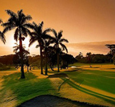 7 day golf tour and package at Selborne Golf Estate